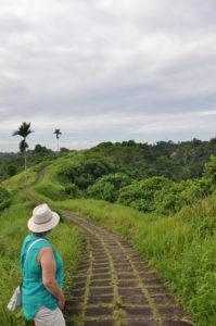Along the Campuhan Walk in Ubud Bali